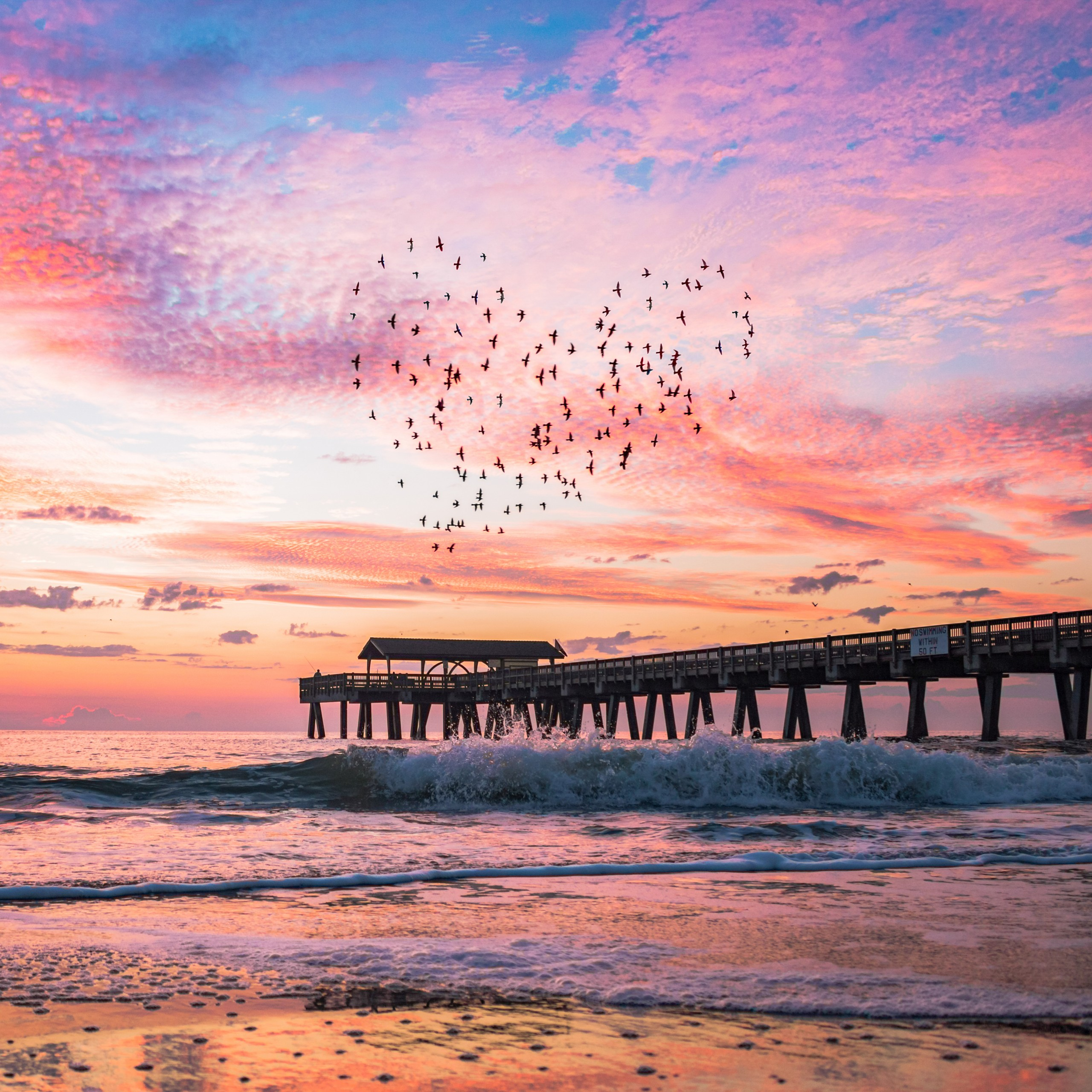 Josh Stewartbirds Heart Shape Sunrise 2